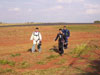 Pára-quedistas da equipe Skydive Araraquara.