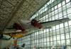 Beechcraft C-45H Expeditor. (11/06/2008) Foto: Santiago Oliver.