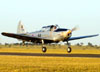 Fairchild PT-19A, PR-CVA.