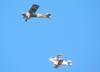Auster MK-IV (réplica, acima), PU-TLR, do Instituto Arruda Botelho, e Christen Eagle II, PT-ZFH.