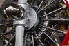 """Detalhe do belíssimo motor radial do Grumman Showcat, PP-XDI, de Pedrinho Melo e Marta """"Wingwalking"""" Bognar. Foto: Luiz Renato Blumlein Vieira"""