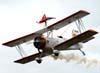 A wingwalker Marta Lucia Bognar voando na asa do Grumman Showcat, PP-XDI, pilotado pelo Pedrinho Melo.