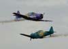 Os North American T-6D, PT-KRC (verde) e PT-LDQ, ambos da Esquadrilha Oi.