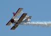 Brazilian Wingwalking Airshows.