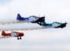 Três North American T-6D do Circo Aéreo. (11/08/2013)