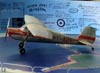 Cessna 140, PT-ADV, de Ada Rogato.