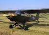 Piper L-21B Super Cub (PA-18-135). (07/06/2009) Foto: Ricardo Dagnone.