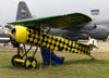 Réplica do Fokker D-VIII, NX8105D. (31/07/2010) - Foto: Ricardo Dagnone.