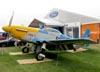 North American P-51D Mustang, N3451D. (31/07/2010) - Foto: Ricardo Dagnone.