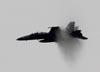 Boeing F/A-18F Super Hornet, 165677, da U.S. Navy. (27/07/2011) - Foto: Celia Passerani.