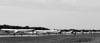Aeronaves taxiando. (29/07/2011) - Foto: Celia Passerani.