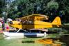 Piper J3C-65 Cub, NC33587. (29/07/2017) Foto: Luiz Passerani