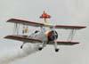 A wingwalker Marta Bognar e Pedrinho Mello, do Brazilian Wingwalking Airshows, durante a apresentação com  o Grumman G-164A Showcat. (25/10/2009)