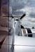 North American P-51D Mustang. (16/04/2010) Foto: Celia Passerani.