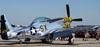 North American P-51D Mustang, N6320T. (01/04/2011) Foto: Celia Passerani.
