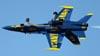 McDonnell Douglas F/A-18C Hornet, 163498, dos Blue Angels (U.S. Navy). (01/04/2011) Foto: Celia Passerani.