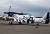 North American TF-51D Mustang, NL351DT. (13/04/2013) Foto: Celia Passerani.