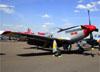 North American P-51D Mustang, N51MX. (03/04/2019)